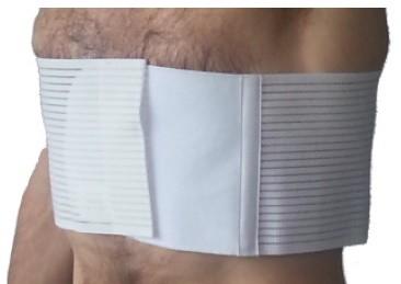 Cintura Toracica